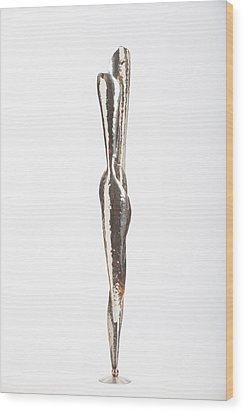 Serenity Of Two Wood Print by Jon Koehler