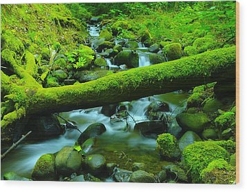 Serenity On The Rocks Wood Print by Jeff Swan