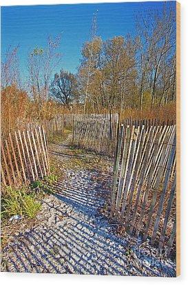 Serenity Trail.... Wood Print by Nina Stavlund