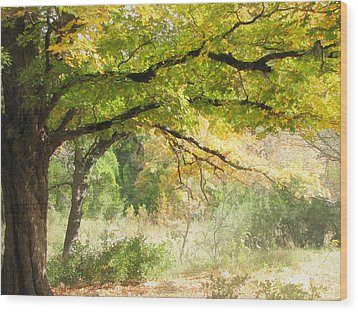 Serenity Wood Print by Wendy J St Christopher