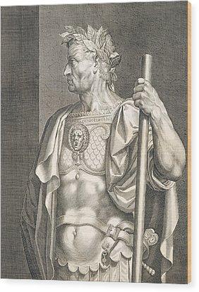 Sergius Galba Emperor Of Rome  Wood Print by Titian