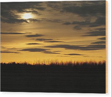 Wood Print featuring the photograph Setting Sun by Gene Cyr