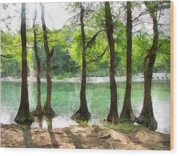 Seven Sisters Wood Print by Wendy J St Christopher