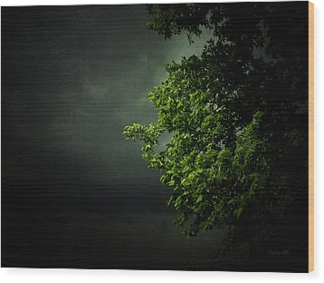 Severe Weather Wood Print by Cynthia Lassiter