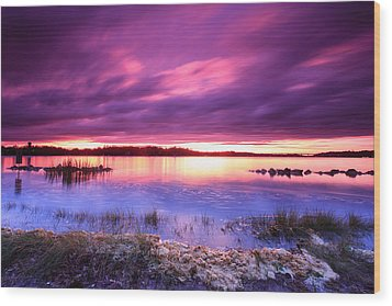Severn River Stunner Wood Print by Jennifer Casey
