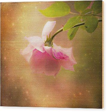 Shabby Chic Rose Print Wood Print by Theresa Tahara