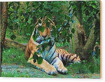 Shaded Stripes Wood Print by Glenn Feron
