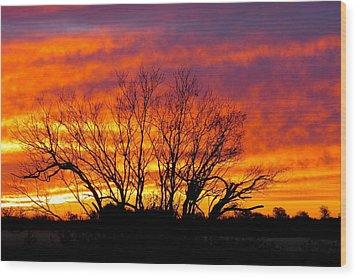Shades Of Morning Wood Print