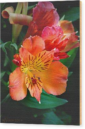 Shades Of Orange Wood Print by  Bill Voizin