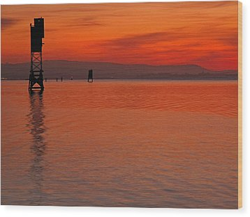 Wood Print featuring the photograph Shades Of Orange by Suzy Piatt