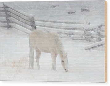 Shades Of Pale Wood Print by Ed Hall