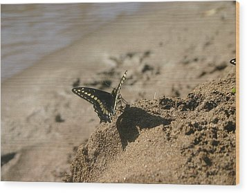 Wood Print featuring the photograph shadow Boxer by Marie Neder