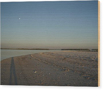 Wood Print featuring the photograph Shadow Moon by Robert Nickologianis