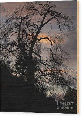 Shadowlands 5 Wood Print by Bedros Awak