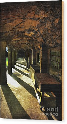 Shadows And Arches I Wood Print