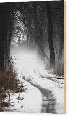 Shadows And Mist At Mentha Wood Print by Penny Hunt