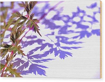 Shadows Wood Print by Eiwy Ahlund