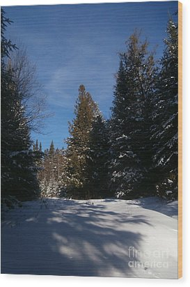 Shadows In The Snow Wood Print by Steven Valkenberg