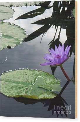 Shadows On A Lily Pond Wood Print