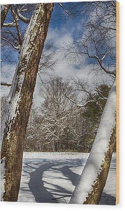 Shadows On The Snow Wood Print by John Haldane