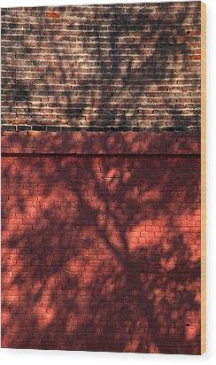 Shadows On The Wall Wood Print by Karol Livote