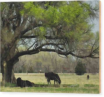 Shady Rest Wood Print by Bill Kesler