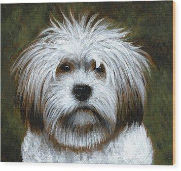 Shaggy ... Dog Art Painting Wood Print by Amy Giacomelli