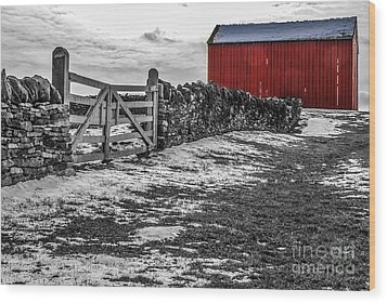 Shakertown Red Barn - Sc Wood Print by Mary Carol Story