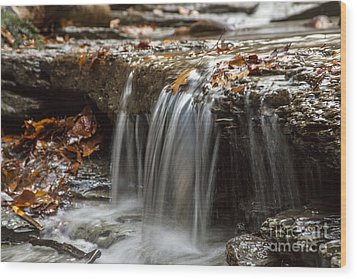Shale Creek In Autumn Wood Print by Darleen Stry