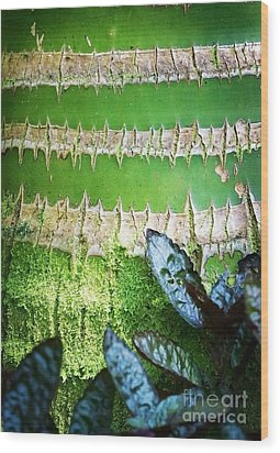Wood Print featuring the photograph Shapes Of Hawaii 13 by Ellen Cotton