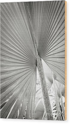 Wood Print featuring the photograph Shapes Of Hawaii 8 by Ellen Cotton