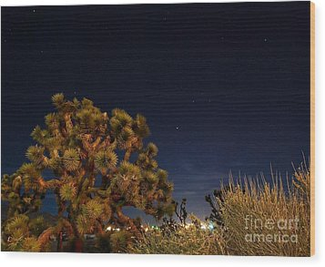 Wood Print featuring the photograph Sharing The Land by Angela J Wright
