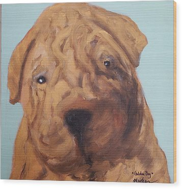Wood Print featuring the painting Sharpei - Golden Boy by Laura  Grisham