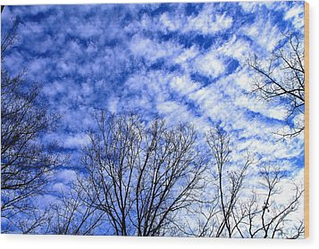 Wood Print featuring the photograph Shattered Skies by Candice Trimble
