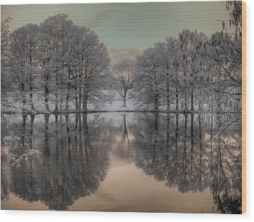Shaw Nature Reserve Wood Print by Jane Linders