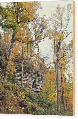 Wood Print featuring the photograph Shawee Bluff In Fall by Marty Koch