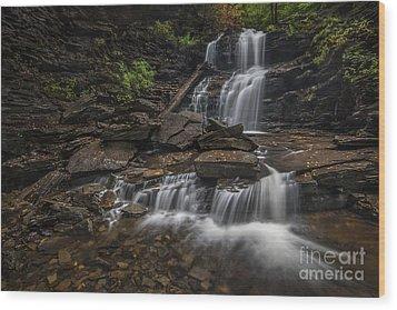 Shawnee Falls Wood Print