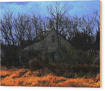 Shed In Brush On Hwy 49 North Of Waupaca Wood Print by David Blank