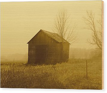 Shed In Field  Wood Print by Michael L Kimble