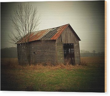 Shed In Pasture Wood Print by Michael L Kimble