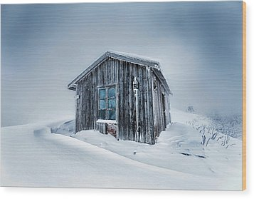 Shed In The Blizzard Wood Print by Evgeni Dinev