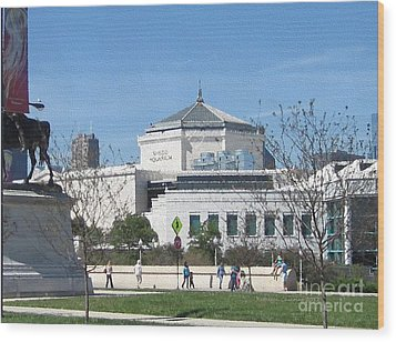 Shedd Aquarium-2 Wood Print by Kathie Chicoine