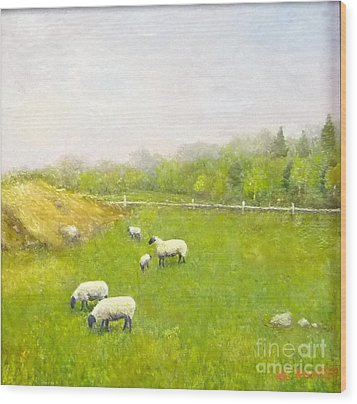 Sheep In Pasture Wood Print