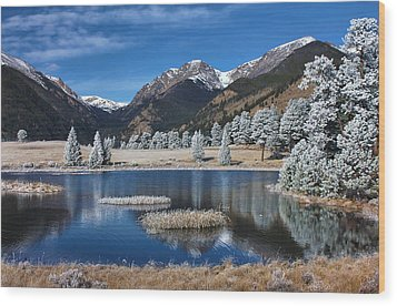 Wood Print featuring the photograph Sheep Lakes In Late October by Darrell E Spangler