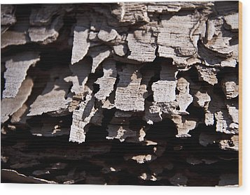 Sheets Of Bark Wood Print