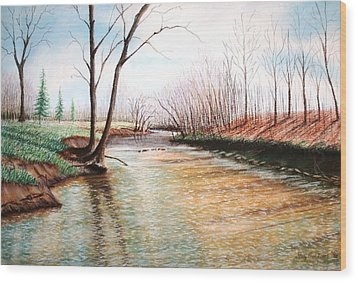 Wood Print featuring the pastel Shelby Stream by Stacy C Bottoms