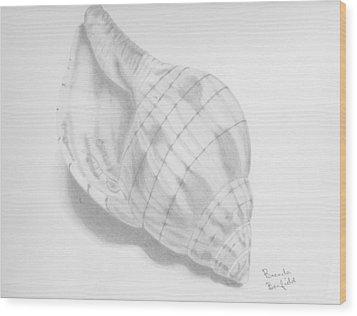 Shell Wood Print by Brenda Bonfield