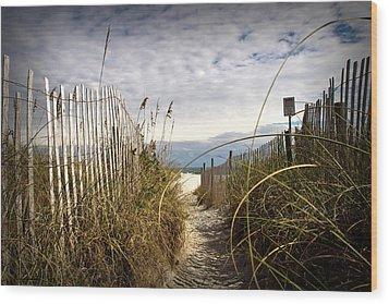 Shell Island Beach Access Wood Print by Phil Mancuso