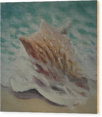 Shell Two - 2 In A Series Of 3 Wood Print by Don Young