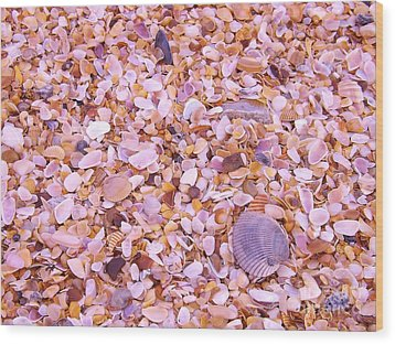 Wood Print featuring the photograph Shells A Million by Brigitte Emme